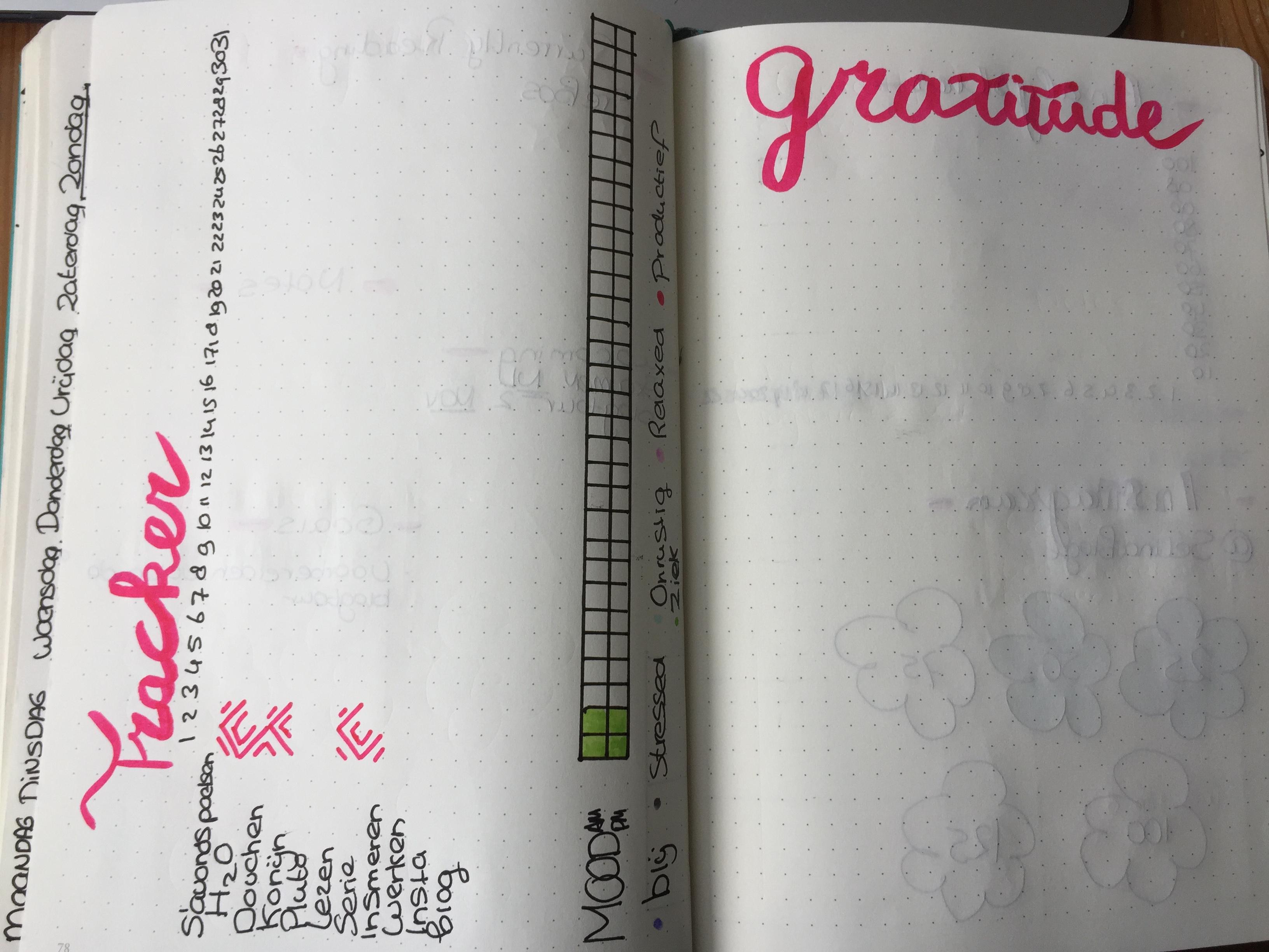 gratitude log en tracker