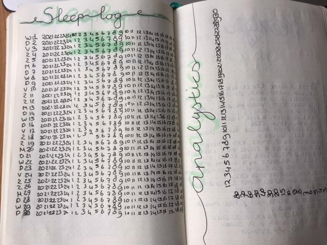 sleep log & analytics