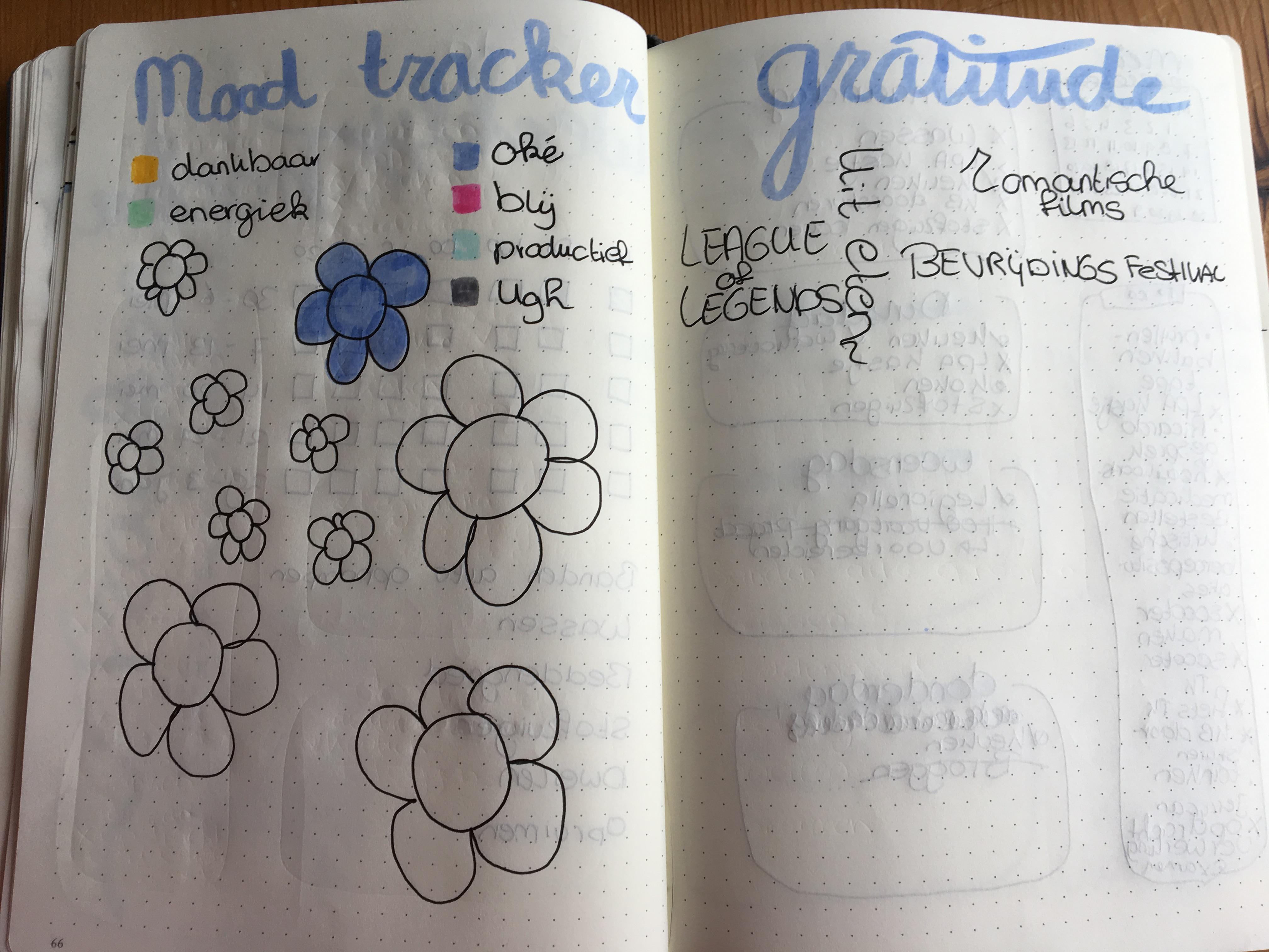 Mood tracker + Gratitude Mei